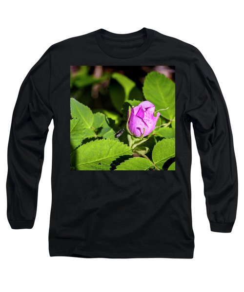 Long Sleeve T-Shirt featuring the photograph Black Bee On Approach by Darcy Michaelchuk