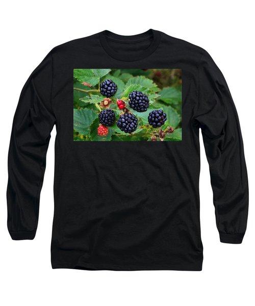 Blackberries 2 Long Sleeve T-Shirt