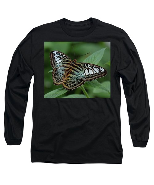 Blue Clipper Butterfly Open Long Sleeve T-Shirt