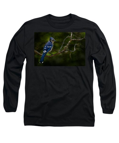 Long Sleeve T-Shirt featuring the photograph Blue Jay In Tree by Michael Cummings