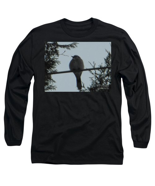Blue Jay On Wire Long Sleeve T-Shirt