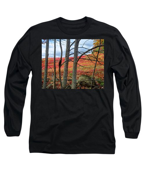 Blueberry Field Through The Wall - Cropped Long Sleeve T-Shirt