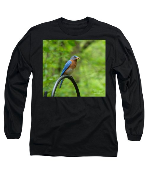 Long Sleeve T-Shirt featuring the photograph Bluebird Catches Worm by Rand Herron
