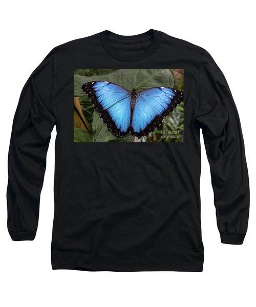 Blue Morph Long Sleeve T-Shirt