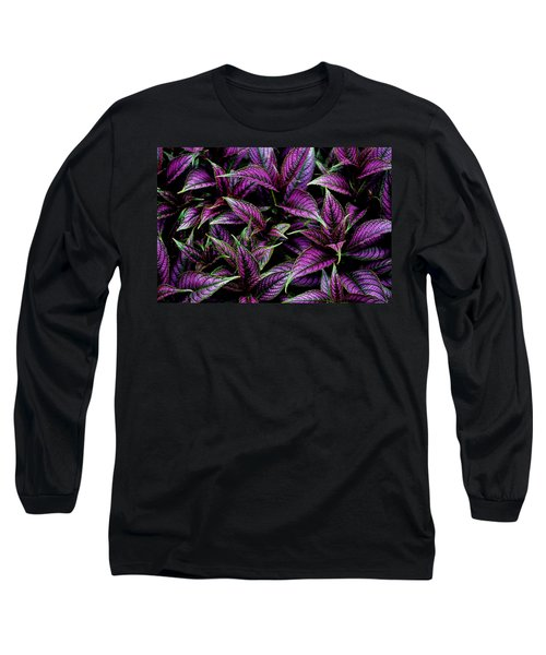 Bouquet Of Persian Shield Long Sleeve T-Shirt