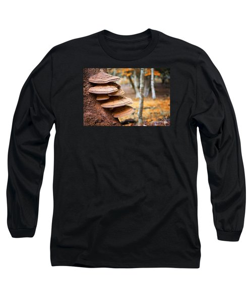 Bracket Fungus On Beech Tree Long Sleeve T-Shirt