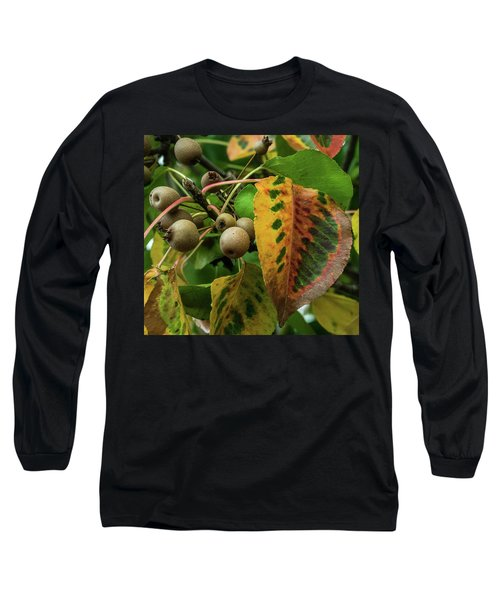 Bradford Pear Fruit And Leaves Long Sleeve T-Shirt