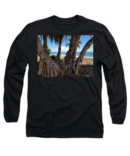 Bribie Trees  Long Sleeve T-Shirt