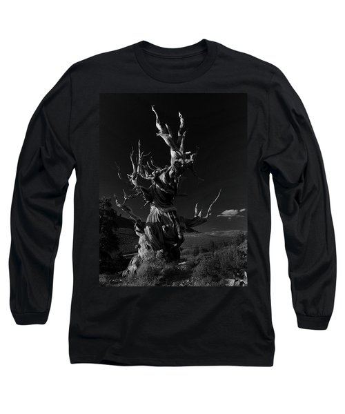 Bristlecone Pine Long Sleeve T-Shirt by Art Shimamura