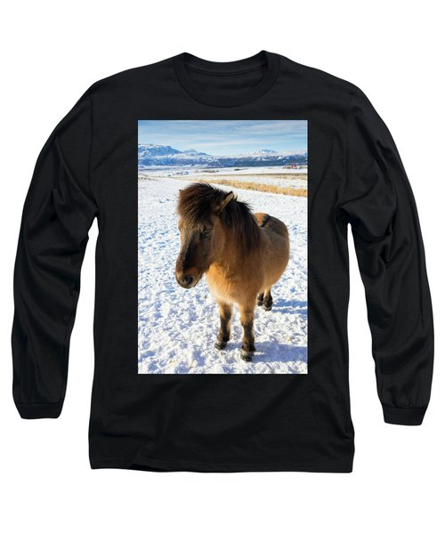 Long Sleeve T-Shirt featuring the photograph Brown Icelandic Horse In Winter In Iceland by Matthias Hauser