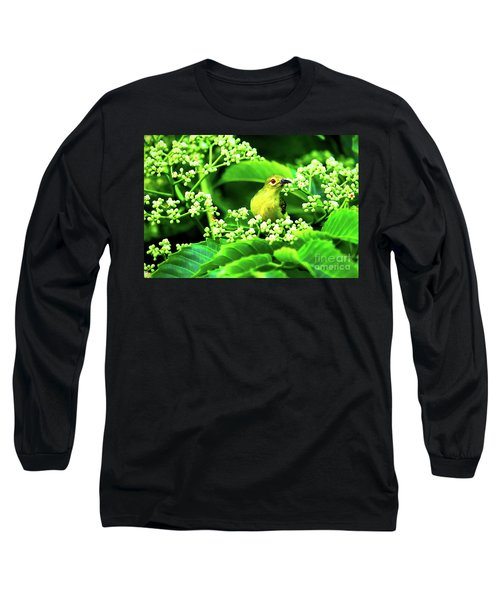 Brown Neck Sunbird Long Sleeve T-Shirt