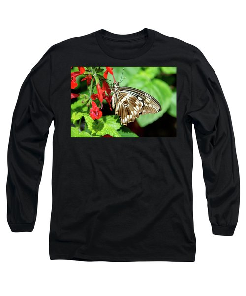 Brown Swallowtail Butterfly Long Sleeve T-Shirt