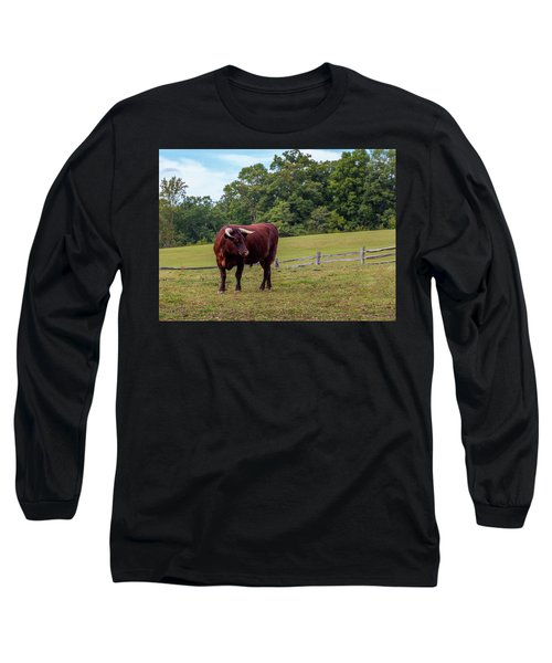 Bull In Field Long Sleeve T-Shirt