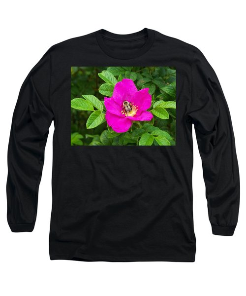 Long Sleeve T-Shirt featuring the photograph Bumble Bee On A Wild Rose by Joy Nichols