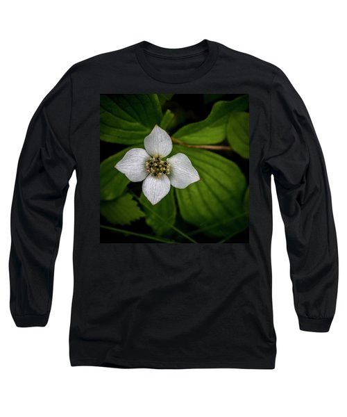 Long Sleeve T-Shirt featuring the photograph Bunchberry Dogwood On Gloomy Day by Darcy Michaelchuk