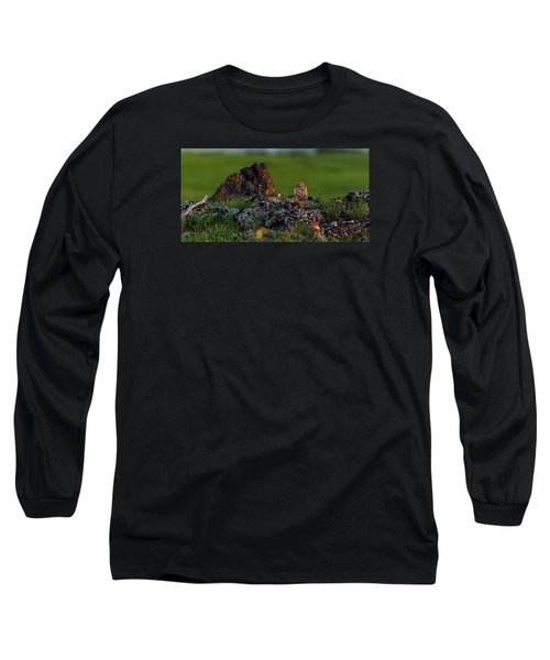 Long Sleeve T-Shirt featuring the photograph Burrowing Owl In Cactus #1 by Yeates Photography