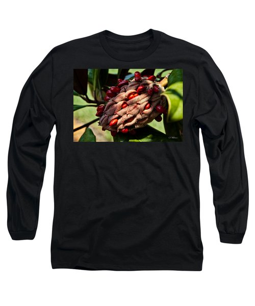 Bursting Forth Long Sleeve T-Shirt by Christopher Holmes