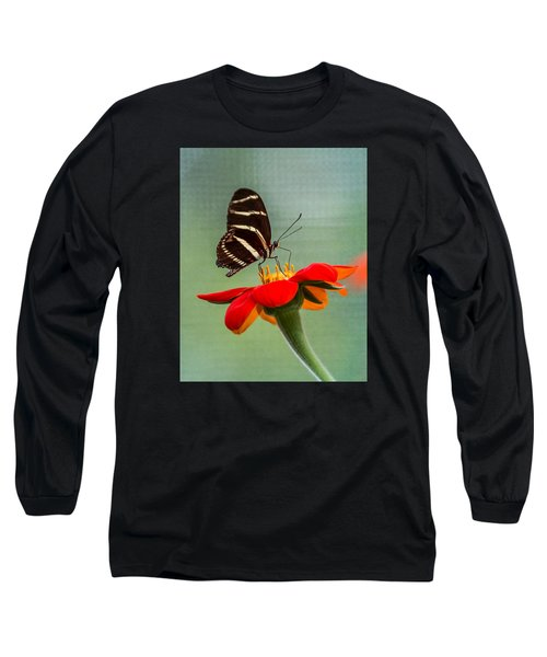 Butterfly Zebra Longwing On Zinnia Long Sleeve T-Shirt