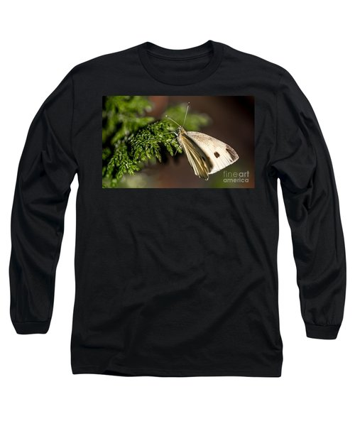 Cabbage Butterfly On Evergreen Bush Long Sleeve T-Shirt