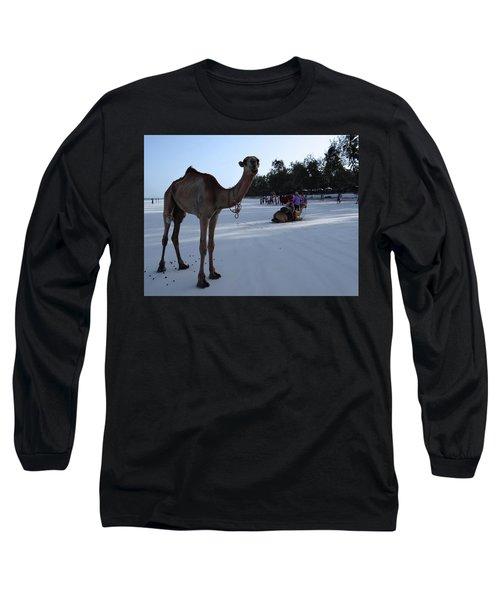 Camel On Beach Kenya Wedding 6 Long Sleeve T-Shirt