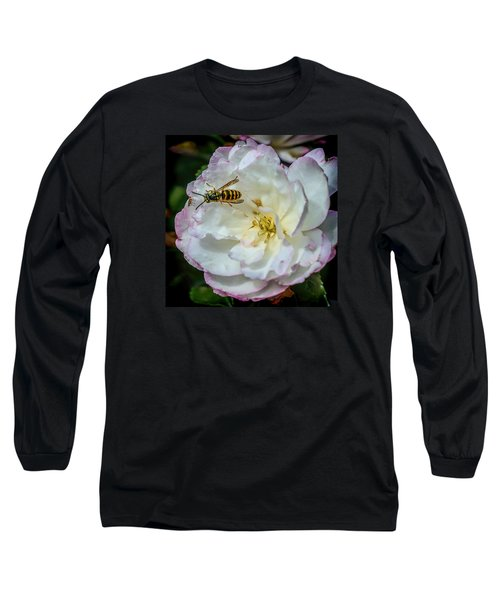 Long Sleeve T-Shirt featuring the photograph Camelia With Company by Susi Stroud