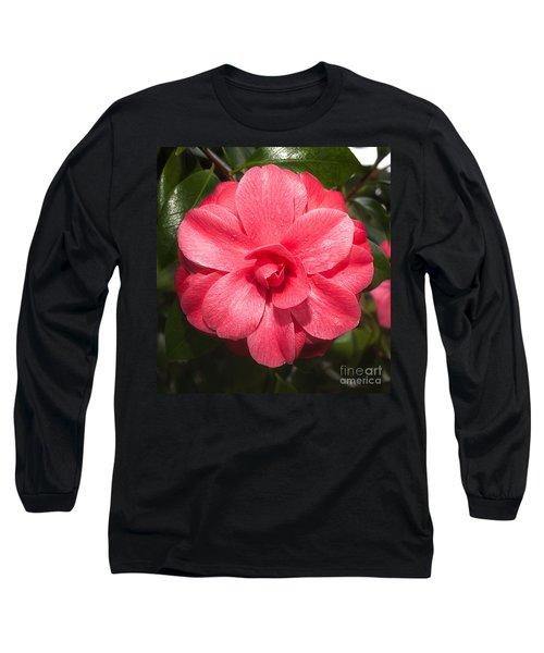 Camellia Japonica ' Mathotiana Rosea' Long Sleeve T-Shirt