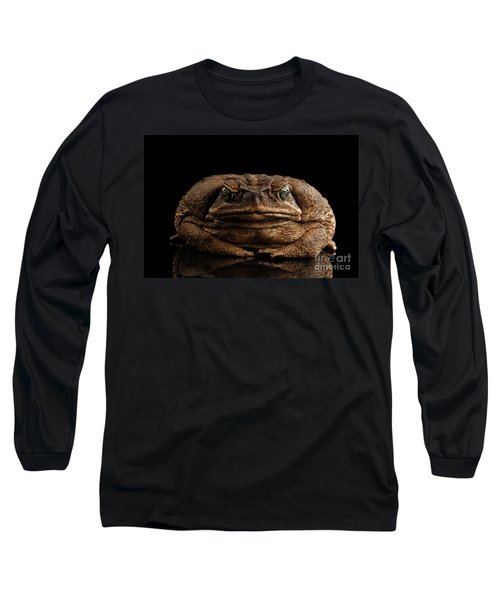 Cane Toad - Bufo Marinus, Giant Neotropical Or Marine Toad Isolated On Black Background, Front View Long Sleeve T-Shirt