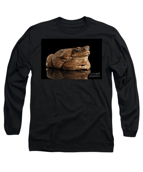 Cane Toad - Bufo Marinus, Giant Neotropical Or Marine Toad Isolated On Black Background Long Sleeve T-Shirt