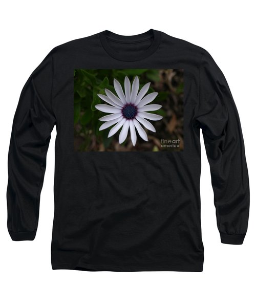 Cape Daisy Long Sleeve T-Shirt by Richard Brookes
