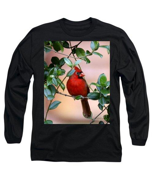 Cardinal In The Jasmine Long Sleeve T-Shirt by Myrna Bradshaw