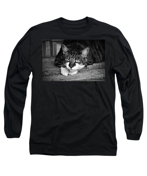 Cat Naps 2 Long Sleeve T-Shirt