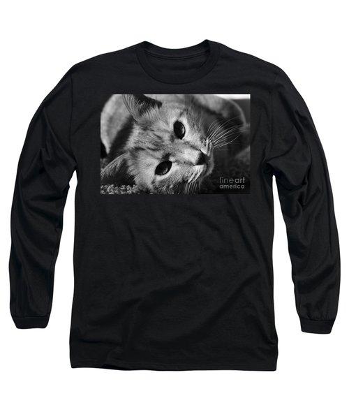 Cat Naps Long Sleeve T-Shirt