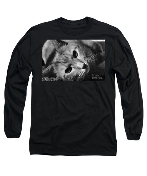 Cat Naps Long Sleeve T-Shirt