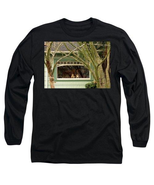 Cat Pals Waiting Long Sleeve T-Shirt