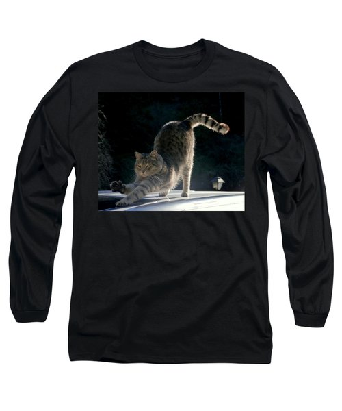 Cat Yoga Long Sleeve T-Shirt by Peter Mooyman