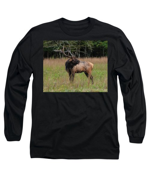 Long Sleeve T-Shirt featuring the digital art Cataloochee Valley Elk  by Chris Flees