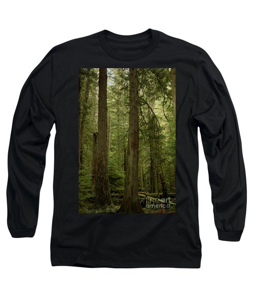 Cathedral Grove Long Sleeve T-Shirt