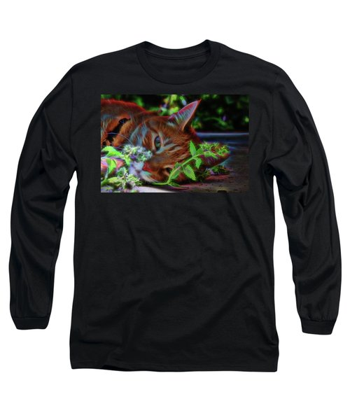 Catnip Chillin Long Sleeve T-Shirt