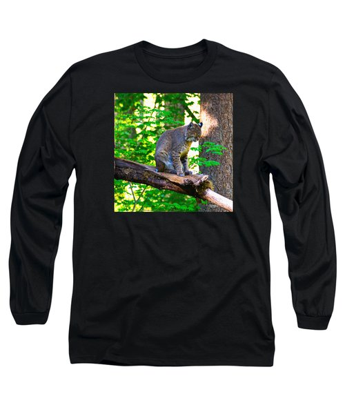 Catnap Long Sleeve T-Shirt by Ansel Price