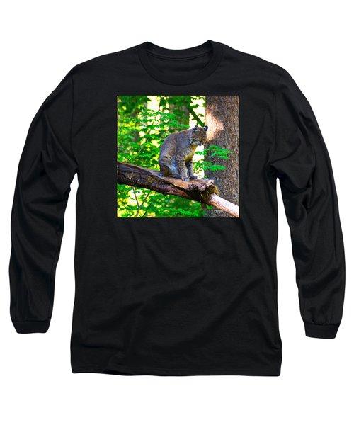 Catnap Long Sleeve T-Shirt