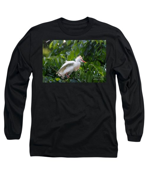 Cattle Egret At Rest Long Sleeve T-Shirt