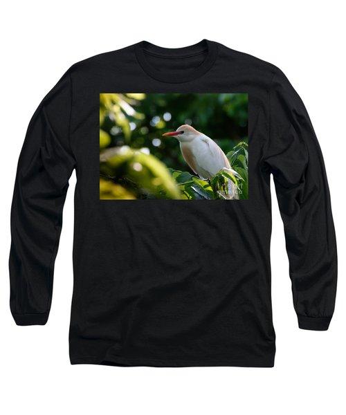 Cattle Egret In Oklahoma Long Sleeve T-Shirt