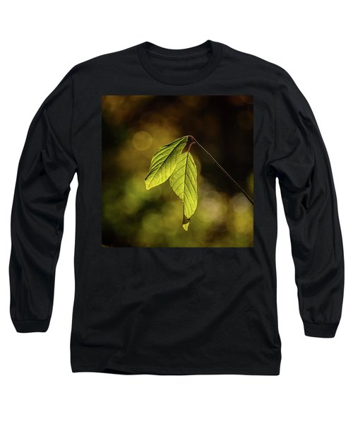 Caught In The Light Long Sleeve T-Shirt