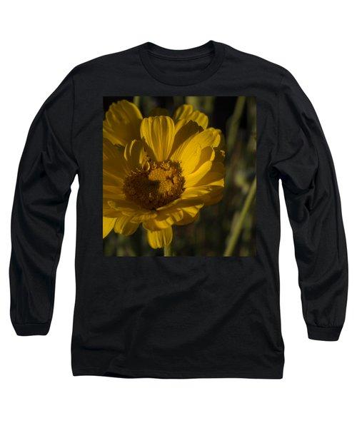Cave Creek Beauty And Shadows Long Sleeve T-Shirt by Carolina Liechtenstein