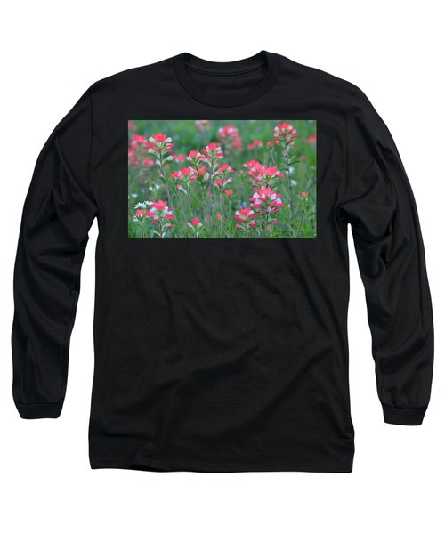 Celebration Of Paintbrushes Long Sleeve T-Shirt