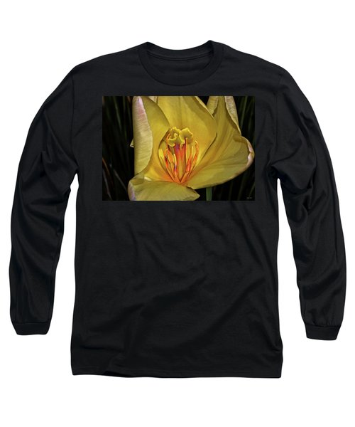 Centerpiece - Grand Opening Yellow Tulip 001 Long Sleeve T-Shirt by George Bostian