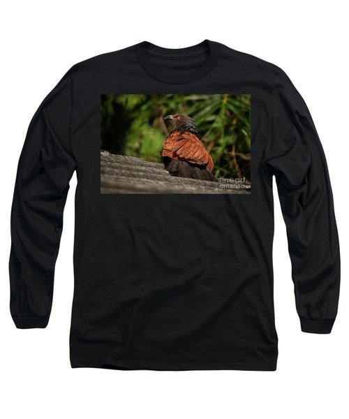 Centropus Sinensis Long Sleeve T-Shirt