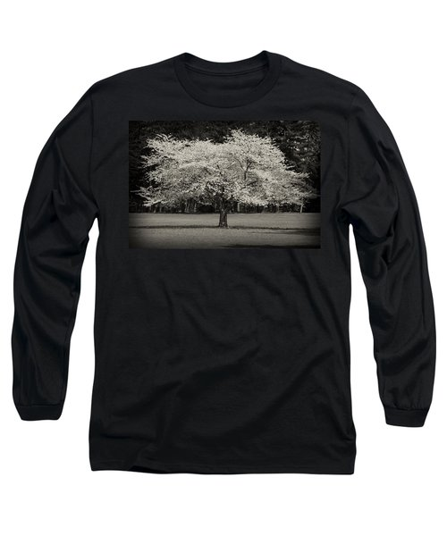 Cherry Blossom Tree - Ocean County Park Long Sleeve T-Shirt