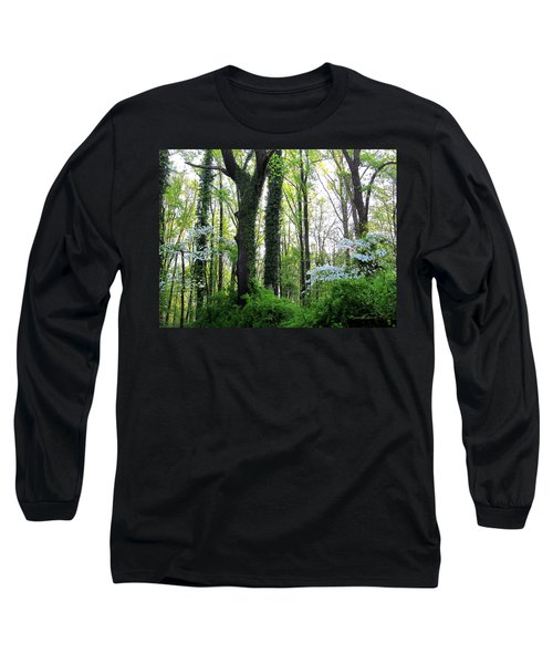 Chesapeake Oldgrowth Forest Long Sleeve T-Shirt