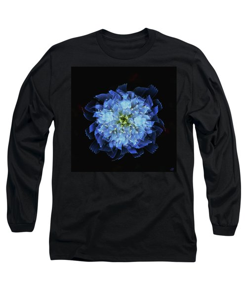 Chicory Abstract Long Sleeve T-Shirt by Stephanie Grant